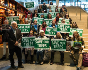 Seattle City Council Hearing - Save Seattle Trees