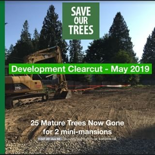 Action Alert Save Urban Forests Now American Forests >> Don T Clearcut Seattle